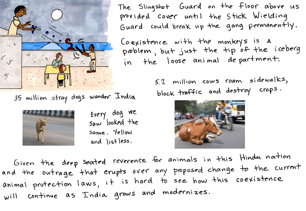 Loose Animals India